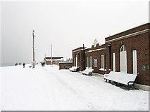TQ2704 : Public Toilets, Western Esplanade by Simon Carey