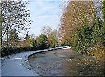 SO8171 : Staffordshire & Worcestershire Canal near Mitton Chapel Bridge by P L Chadwick