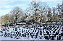 SJ8959 : The Town Cemetery by Jonathan Kington