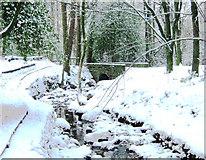 SJ8959 : Bridge in the snow by Jonathan Kington