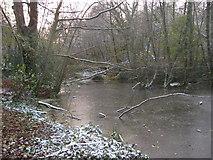 ST2988 : Frozen Pond by David Roberts