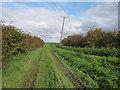 TL4689 : Darcey Lode by Hugh Venables
