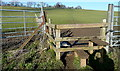 SU9088 : Footpath towards Flackwell Heath by Graham Horn