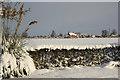 SK8769 : View towards Grange Farm by Richard Croft
