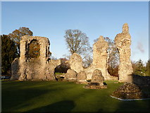 TL8564 : Bury St. Edmunds: the abbey ruins by Chris Downer