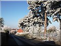 SP2972 : Frost in Spring Lane by John Brightley