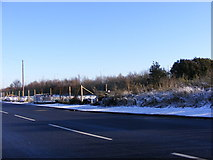 SO9596 : Lunt Road View by Gordon Griffiths