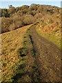 SX7289 : Two Moors Way below Castle Drogo by Derek Harper