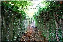 TQ5359 : North Downs Way entering Otford by N Chadwick