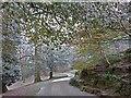 ST3087 : A frosty scene in Belle Vue Park by Robin Drayton