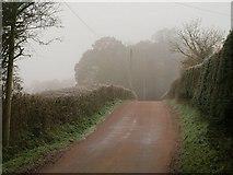 ST0209 : Lane to Brithem Bottom by Derek Harper