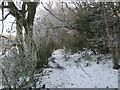 TQ4457 : Footpath to Old Harrow Lane by David Anstiss