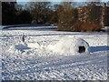 SE6250 : Igloo on Derwent Lawns by DS Pugh