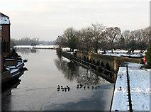SK7953 : Newark: the Trent at Longstone Bridge by John Sutton
