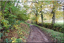 TQ5334 : Lane crossing the Sussex Border Path by N Chadwick