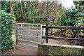 J3369 : Gate, Belvoir forest, Belfast by Albert Bridge