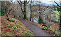 J3369 : Belvoir forest, Belfast (8) by Albert Bridge
