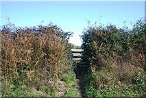 TQ8224 : Stile, Sussex Border Path, Northiam by N Chadwick