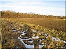 NZ2115 : Ploughed field by Piercebridge Roman bridge by David Hawgood