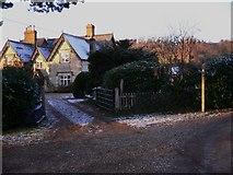 SU7431 : House by footpath on Empshott Green by Shazz