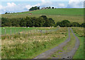 NY8880 : Country road near Redesmouth (5) by Stephen Richards