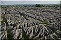 SD8964 : Limestone pavement above Malham Cove by Christopher Hilton