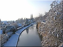 SO8171 : The Staffordshire & Worcestershire Canal in winter by P L Chadwick