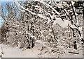 J3773 : Snow, Comber Greenway, Belfast by Albert Bridge