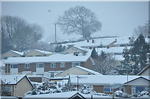 SS9612 : Tiverton : Snowy Scene from the Canal by Lewis Clarke