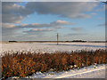 TG4621 : Snow covered fields beside Horsey Road by Evelyn Simak