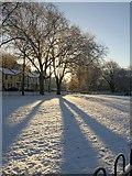 SX9164 : Upton Park in the snow by Derek Harper