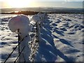 NS4177 : Snow-covered fence by Lairich Rig