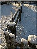 SX9164 : Fence, Upton Park, Torquay by Derek Harper