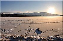 NH9718 : Frozen Loch Garten by Steven Brown