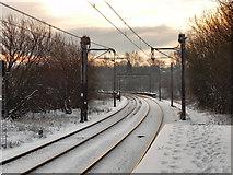 SD7807 : Metrolink Tramway by David Dixon