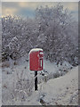 NG4148 : Chilly postbox by Richard Dorrell