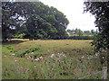 SO7119 : Moat at Huntley by Trevor Rickard