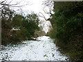 SE9646 : A footpath towards Lockington by Ian S