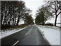 SE9746 : A minor road to Lockington by Ian S