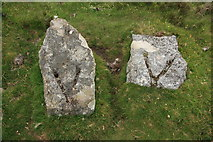 SX6781 : Slotted stones east of Water Hill by Guy Wareham