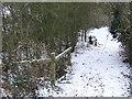 TL9551 : Footpath by Keith Evans