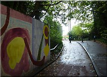 SU6351 : Graffiti on the Cliddesden Road Underpass by Basher Eyre