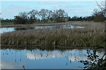SO8843 : Croome River and Croome Court by Philip Halling