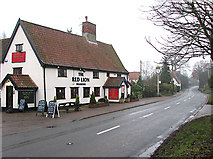 TM2281 : The Red Lion public house in Needham by Evelyn Simak