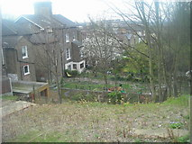 TQ3370 : Jasper Road, SE19: view down into back gardens of Woodland Road by Christopher Hilton