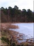 SE5976 : Ice on the pond by Gordon Hatton