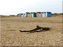 TM5075 : Beach huts in The Denes, Southwold by Evelyn Simak
