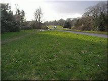 TQ1350 : Ranmore Common, Dorking by David Howard