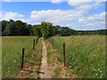 SP8300 : Bridleway, Lacey Green by Andrew Smith