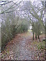 TM3665 : Carlton Lane Bridleway by Adrian Cable